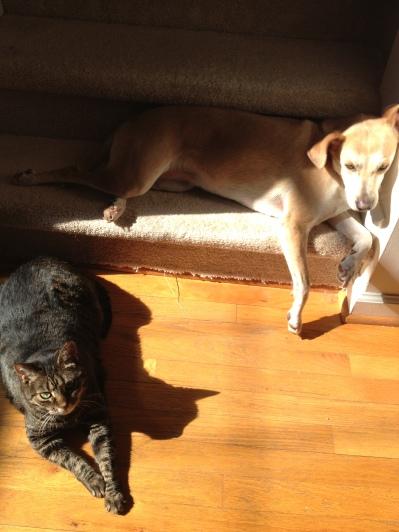 I sunbathe with my sister