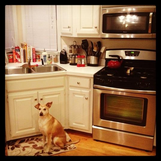I help mom cook dinner