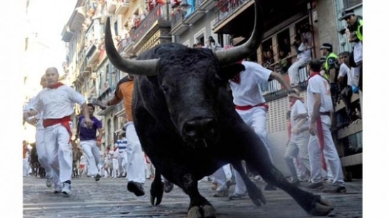 Tune in Tonight to Hear Why I'm Protesting the Great Bull Run
