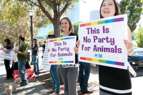 PETA Protest Photo Courtesy of Creative Loafing