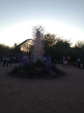 Desert Botanical Gardens 22