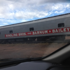 Ringling train that trucks the animals across the country